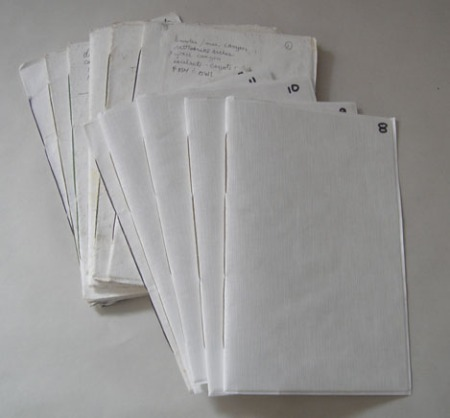 Tyvek journals, numbered for order and with text on the covers notes specific trips and dates.
