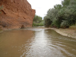View downriver from the mouth of Choprock Canyon before storm. River flow is about .2 CFS.
