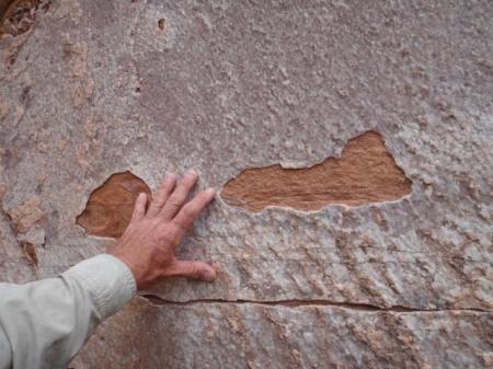 thin sheet of quartzite material on navajo sandstone slab, escalante river, utah. Photo by Gerald Trainor.
