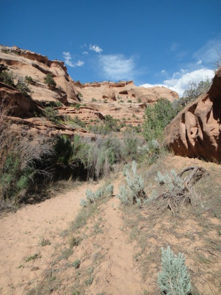 Jones Canyon Utah backpacking