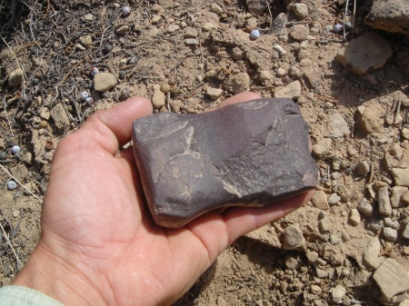 Stone axe head from Northern San Juan region. Photo by Gerald Trainor.