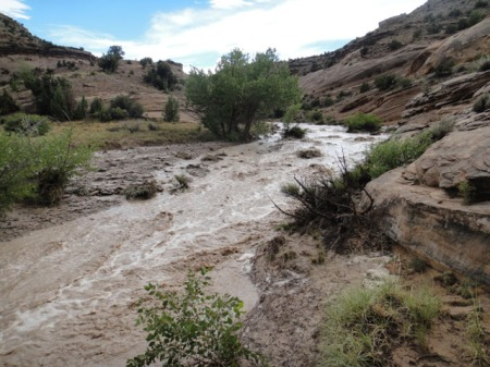 Flash flood in San Rafael River. Photo by Gerald Trainor.