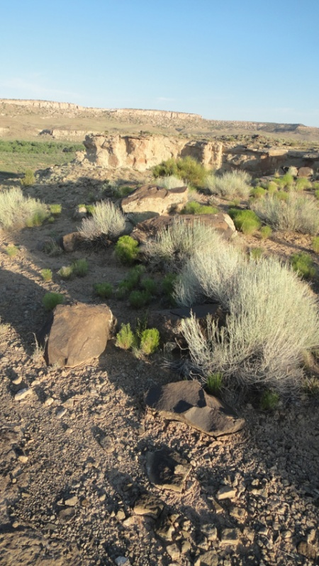 ritual pathways near Spirit Bird Cave, southern Utah. Photo by Gerald Trainor.